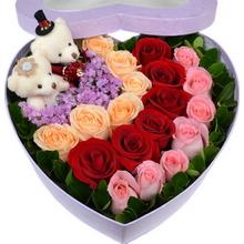 6枝香檳玫瑰、6枝紅玫瑰、7枝粉玫瑰如圖擺放,勿忘我點綴,綠葉圍邊,2個精美小熊