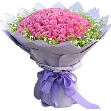 99枝紫玫瑰,滿天星、黃鶯外圍