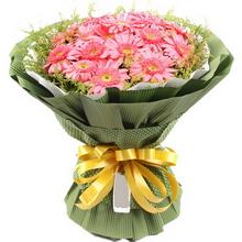 16枝粉色扶郎花,外围搭配黄莺适量