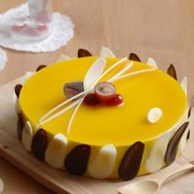 圓形芒果慕斯蛋糕,水果點綴,巧克力裝飾圍邊