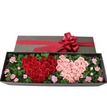紅玫瑰,粉玫瑰共36朵,蓬萊松豐滿,小花點綴