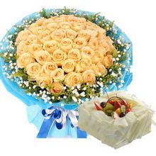 51枝香檳玫瑰,滿天星、黃鶯外圍;方形巧克力水果蛋糕