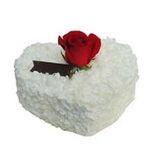 心形巧克力蛋糕,一朵新鮮紅玫瑰裝飾,白色巧克力屑鋪面
