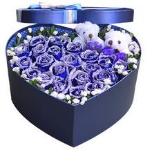 19朵藍玫瑰,2個情侶小熊,滿天星、米蘭葉外圍