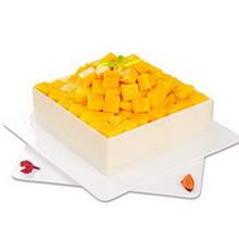 方形芒果慕斯蛋糕,巧克力圍邊