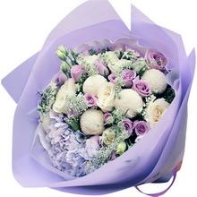 16朵紫玫瑰,6朵白玫瑰,一枝紫色繡球,蕾絲、桔梗、乒乓菊間插