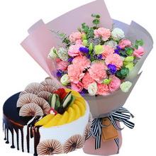 19朵粉色康乃馨,情人草、桔梗間插;圓形水果蛋糕,半邊巧克力醬淋面,半邊水果鋪面,巧克力裝飾搭配