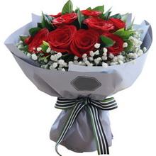 紅玫瑰11枝,滿天星圍繞,梔子葉0.5扎