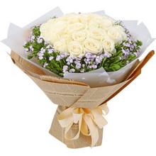 33支精品白玫瑰,搭配適量淺紫色相思梅