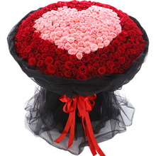 520枝玫瑰:紅玫瑰321枝,粉色戴安娜玫瑰199枝圍成心形。