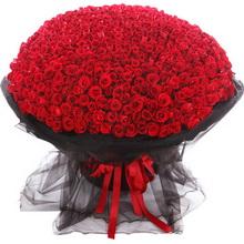 999枝紅玫瑰。