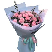 21支粉色康乃馨,尤加利葉,小碎花搭配豐滿