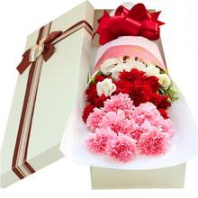 9朵粉色康乃馨,9朵红色康乃馨,桔梗搭配,粉色雾面纸包