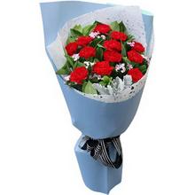 12朵紅色康乃馨,綠葉豐滿,銀葉菊少許搭配制作