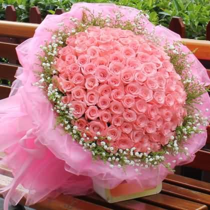 099枝玫瑰花/粉玫瑰