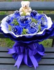 11朵蓝色妖姬+1只小熊,花头用纱网单独裹头,配黄莺