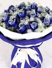 19朵蓝玫瑰深蓝色包装