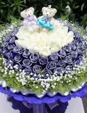 99朵蓝色妖姬