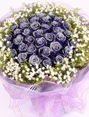 33朵蓝玫瑰