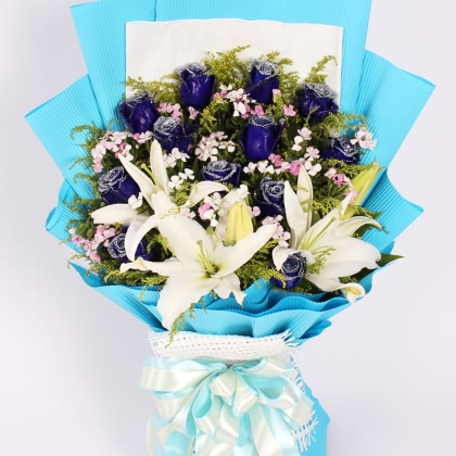 12枝玫瑰花/蓝玫瑰图片