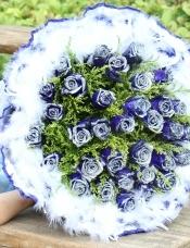 精心挑选33朵蓝玫瑰,黄莺,白色羽毛点缀