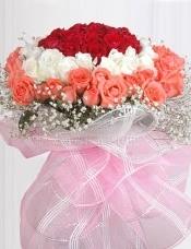 77枝顶级玫瑰,由内至外分别由红玫瑰,白玫瑰,粉玫 瑰组成圆形花束,外围满天星环绕。