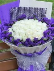 精心挑选33朵昆明白玫瑰,紫色勿忘我外围.