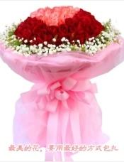 99枝玫瑰花束:33枝粉色玫瑰组成的心形居中,66枝红玫瑰环绕,周围满天星点缀,网纱高档包装