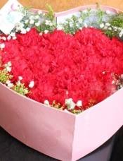 19朵红色康乃馨,外围满天星、黄莺