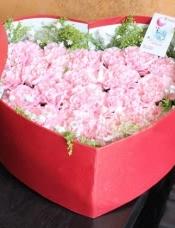 19朵粉色康乃馨,外围黄莺、满天星
