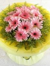 精心挑选16朵优质粉扶郎,黄莺丰满点缀,组成美丽花束