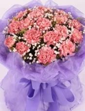 19朵粉色康乃馨,满天星黄莺搭配