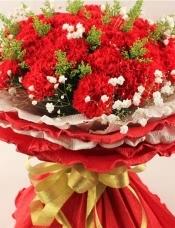 精心挑选33朵优质红康乃馨,搭配黄莺,满天星,美丽迷人