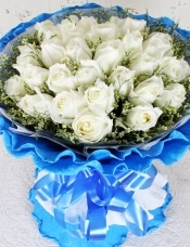 精心挑选33朵白玫瑰,情人草点缀