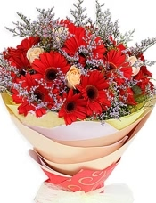 18枝红色太阳花(即扶郎),6枝香槟玫瑰,紫色情人草搭配。