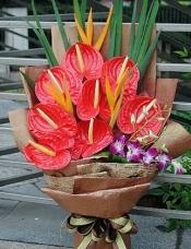 A级优质大红掌8枝,泰国兰3枝,鹤望兰3枝,绿叶适量