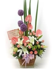 粉玫瑰9枝,香��玫瑰9枝,多�^香水百合1枝、粉色康乃馨,�d子�~�m量