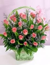 粉玫瑰39支+情人草