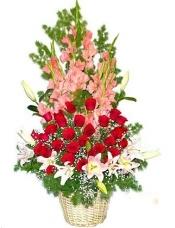 9枝粉色香水百合,29枝红玫瑰,15枝粉色剑兰,满天星和文竹等绿叶搭配