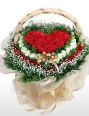 花篮:绿叶和满天星围绕一圈,外围36枝红玫瑰围一圈,然后用33枝白玫瑰围一圈,正中心用42枝红玫瑰插成心形