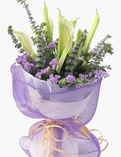 10枝白色马蹄莲,紫色勿忘我搭配,尤加利叶适量