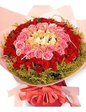 玫瑰99朵(由外到里:红、粉红、香槟、粉桔、白),黄莺环绕