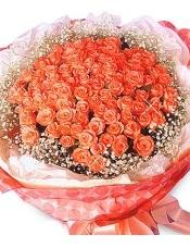 粉红(或红色)玫瑰100枝,满天星环绕。