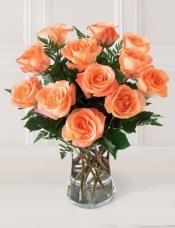 12枝粉色玫瑰,搭配配叶