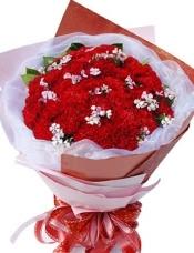 33枝红色康乃馨,搭配适量相思梅