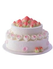 直径18+25cm双层蛋糕 原味戚风蛋糕+酸奶提子夹心+巧克力+巧克力软糖