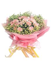 粉色康乃馨22支。水晶草或情人草点缀。