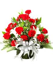 红色康乃馨36朵 白色百合2朵, 满天星 绿叶丰满
