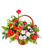 20枝红色康乃馨,10枝粉色康乃馨,黄莺、绿叶丰满