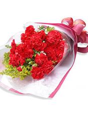19支红色康乃馨,配黄莺